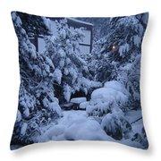 Luscious Snowfall Throw Pillow