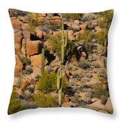 Lush Arizona Desert Landscape Throw Pillow