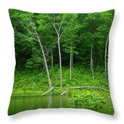 Lush Green Pond Throw Pillow