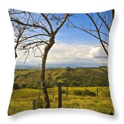 Lush Land Leafless Trees I Throw Pillow