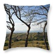 Lush Land Leafless Trees Iv Throw Pillow