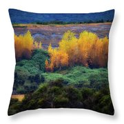 Lush New Zealand Countryside Throw Pillow