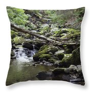 Lush Stream And Canopy Foliage Throw Pillow