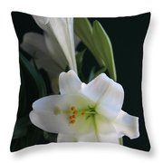 Lustrous Lilies Throw Pillow