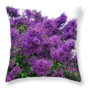 Luxurious Lilacs Throw Pillow
