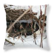 Lying In Wait Throw Pillow