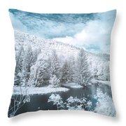 Lyman Run State Park 0376ir Throw Pillow