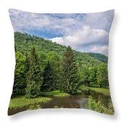 Lyman Run State Park Throw Pillow