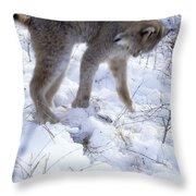 Lynx Captures Hare Throw Pillow