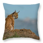Lynx In Profile On Rock Looking Down Throw Pillow