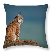 Lynx In Profile On Rock Looking Up Throw Pillow