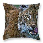 Lynx Licks Lips Throw Pillow