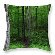 Ma Section Begins Throw Pillow