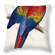Macaw By_edward_lear Throw Pillow
