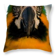 Macaw IIi Throw Pillow