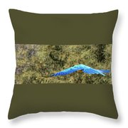Macaw In Flight Throw Pillow