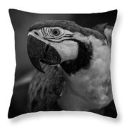 Macaw Portrait In Black And White Throw Pillow