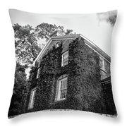 Mackenzie Printery 13134 Throw Pillow