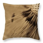 Macro - Dandelion Throw Pillow
