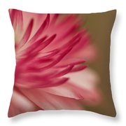 Macro - Pink Flower Throw Pillow
