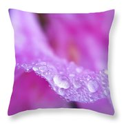 Macro Art - Primary Focus Throw Pillow