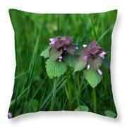 Macro Blooming Clover Throw Pillow