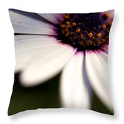 Macro Daisy Throw Pillow