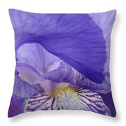 Macro Irises Close Up Purple Iris Flowers Giclee Art Prints Baslee Troutman Throw Pillow
