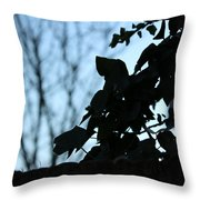 Macro On Leaves Throw Pillow