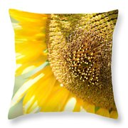 Macro Photography Of Sunflower Throw Pillow