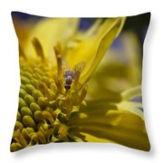 Macro Pollinating Fly Throw Pillow