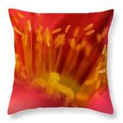 Macro Poppy 4 Throw Pillow