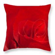 Macro Red Rose Throw Pillow