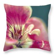 Macro Study IIi Throw Pillow