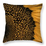 Macro Sunflower Throw Pillow