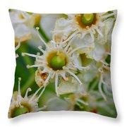 Macro Week Throw Pillow