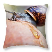 Macro World Throw Pillow