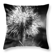 Macrofied Throw Pillow