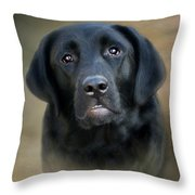 Macy-portrait Of A Black Lab Throw Pillow