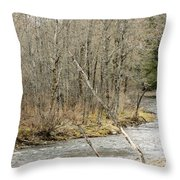 Madawaska Stream Bend Throw Pillow