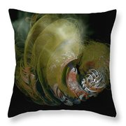 Made From Cosmic Dust Throw Pillow