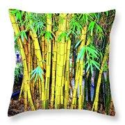 City Park Bamboo Grass Throw Pillow