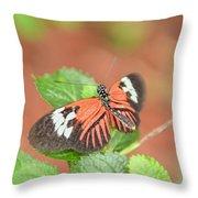 Madiera Butterflies Throw Pillow
