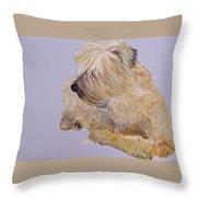 Madigan Wheaten Terrier Throw Pillow