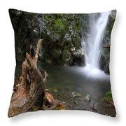 Madison Falls 3 Throw Pillow