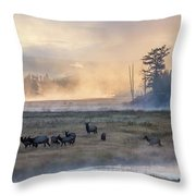 Madison Morning Throw Pillow