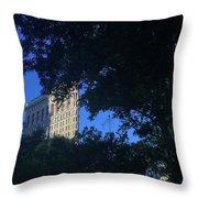 Madison Square Park Throw Pillow