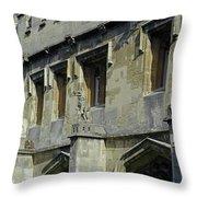 Magdalen Gargoyles Throw Pillow