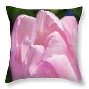 Magenta Bloom Throw Pillow