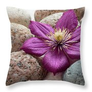 Clematis Flower On Meditation Stones Throw Pillow